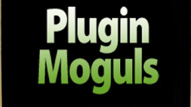 plugin-moguls-feature